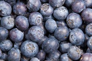 Bilberry - Botanical Ingredient - Linnea