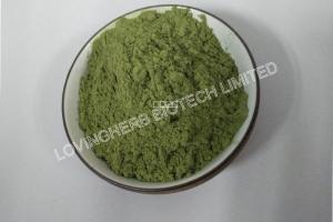 Organic Barley Grass Powder-Organic food ingredients-Product center-Lovingherb Biotech Limited [v2.1.5]