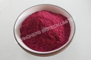 Organic Bilberry Extract-Organic plant extracts-Product center-Lovingherb Biotech Limited [v2.1.5]
