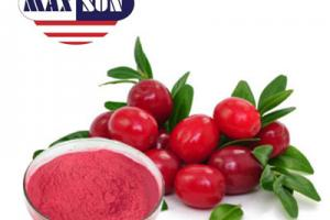 Cranberry Juice Powder Manufacturer & Suppliers & Distributor - Wholesale Bulk Cranberry Juice Powder for Sale from Factory - MAXSUN