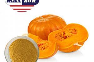 Organic Pumpkin Seed Protein Powder Manufacturer & Suppliers & Distributor - Wholesale Bulk Organic Pumpkin Seed Protein Powder for Sale from Factory - MAXSUN