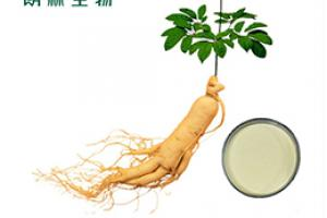 Ginseng Extract_Plant Extract,Plant Extracts Innovator,Naturalin Bio-Resources Co., Ltd