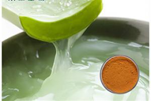 Aloe Vera Extract_Plant Extract,Plant Extracts Innovator,Naturalin Bio-Resources Co., Ltd
