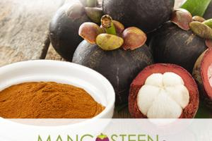 Mangosteen Royale™  Standardized 10:1 Extract