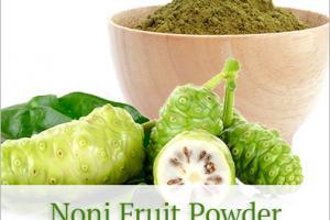Noni Fruit Powder (organic, mesh 80) - Nutra Organics