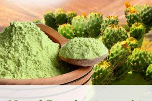 Nopal Powder (organic)