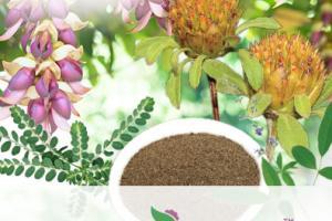 Nutra Brain™ Health Blend
