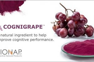 A natural ingredient to improve cognitive performance