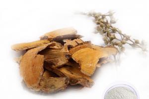 Polygonum Cuspidatum Extract - natural pigment extraction - Organic Herb Inc