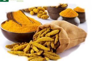 Turmeric Curcuma Extract - Plant Extract - nutraceutical - Organic Herb Inc