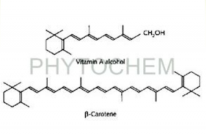 Beta-Carotene CWS 10%, TAB 20%