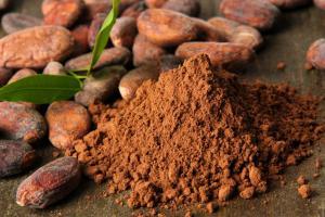 Chocamine® | RFI Ingredients