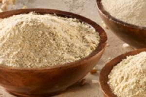 RiceBran Technologies - RiBran Food Ingredient