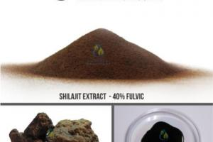 Shilajit Extract Manufacturer with 40% Fulvic Acids | S.A Herbal Bioactives