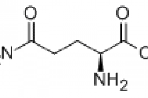 L-Glutamin-Amino Acids-Amino acid & Derivatives-Sichuan Benepure Pharmaceutical Co., Ltd.