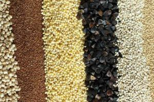 Ancient Grains - HFI