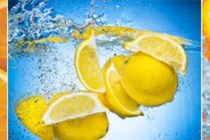 Citrus PMF-source®, Eriocitrin, Limonoids | Source One Global Partners