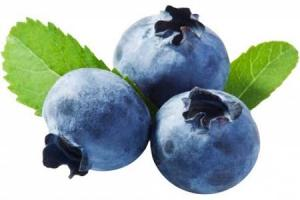 Bilberry Extract 36% Anthocyanins/25% Anthocyanidins