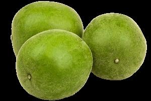 Monk Fruit Extract 25% Mogroside V