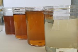 organic invert cane syrup