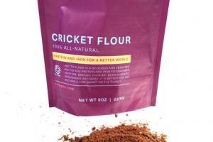 Aketta: Shop Cricket Protein Powder & Gluten-Free Cricket Flour – Aspire