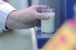 Dairy powders - Ingredia Dairy Experts