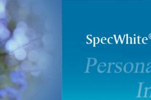 SpecWhite ® Plus|CAS NO.: 94279-78-4--Spec-Chem Industry Inc.