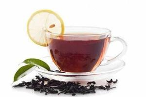 Black Tea Extracts  - Beverage Extracts - Cymbio Pharma