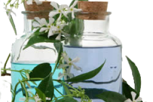 AAC :: Natural Essential Oils/Aroma Molecules