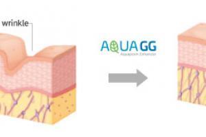 AquaGG® : Glyceryl glucoside