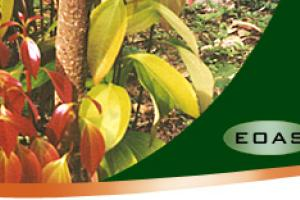 EOAS Organics  ::  Products