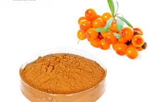 Sea buckthorn fruit powder concentrate