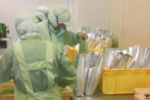 Matcha Quality Control - AOI Tea Company