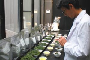 Matcha Sommeliers - AOI Tea Company