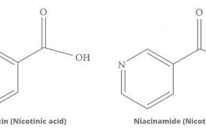 Niacin / Niacinamide