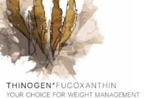 ThinOgen™ Fucoxanthin | BGG