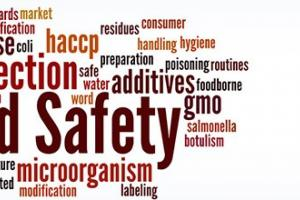 Food Safety Regulations