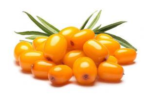 Sea Buckthorn Fruit