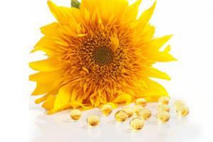 SunPS® Sunflower PS – Eca Healthcare