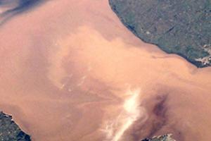 Sediment and Tissue - Eurofins USA