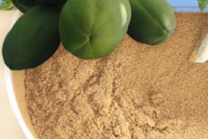 Organic Green Papaya Powder - Shining Seas Imports