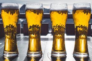 Beer Spoilage PCR Test Kit   Microbiologique