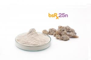 Boswellia Serrata Extract - bsRx