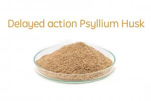 Delayed Action Psyllium Husk