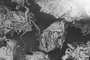 ARBOCEL® | Powdered Cellulose- JRS Pharma