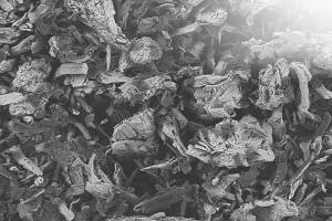 EMCOCEL® & VIVAPUR® | Microcrystalline Cellulose- JRS Pharma