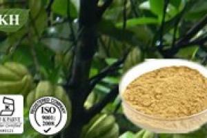 Garcinia Cambogia Extract HCA 50% - KINGHERBS LIMITED