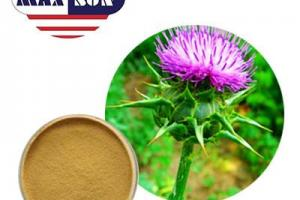 Organic Milk Thistle Powder 80% Silymarin Manufacturer & Suppliers & Distributor - Wholesale Bulk Organic Milk Thistle Powder 80% Silymarin for Sale from Factory - MAXSUN
