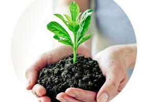 PLFA Analysis | Soil Microbial Biomass | MIDI, Inc.