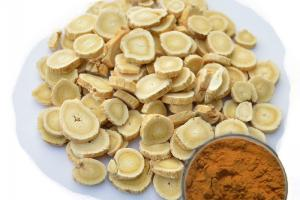 Astragalus Extract - Plant Extract - Organic Herb Inc
